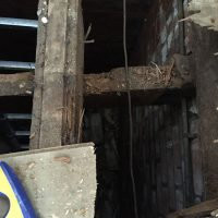 Damged-rotted-Floor-Joists