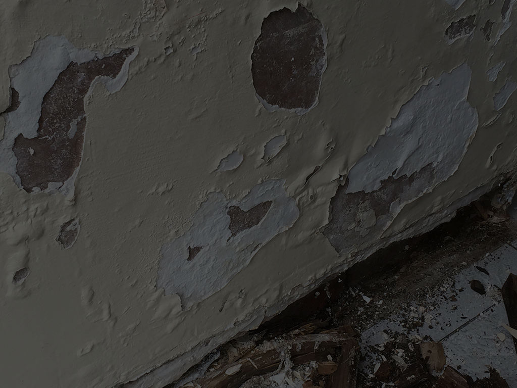Damp Proofing & Plastering Services in Wigan